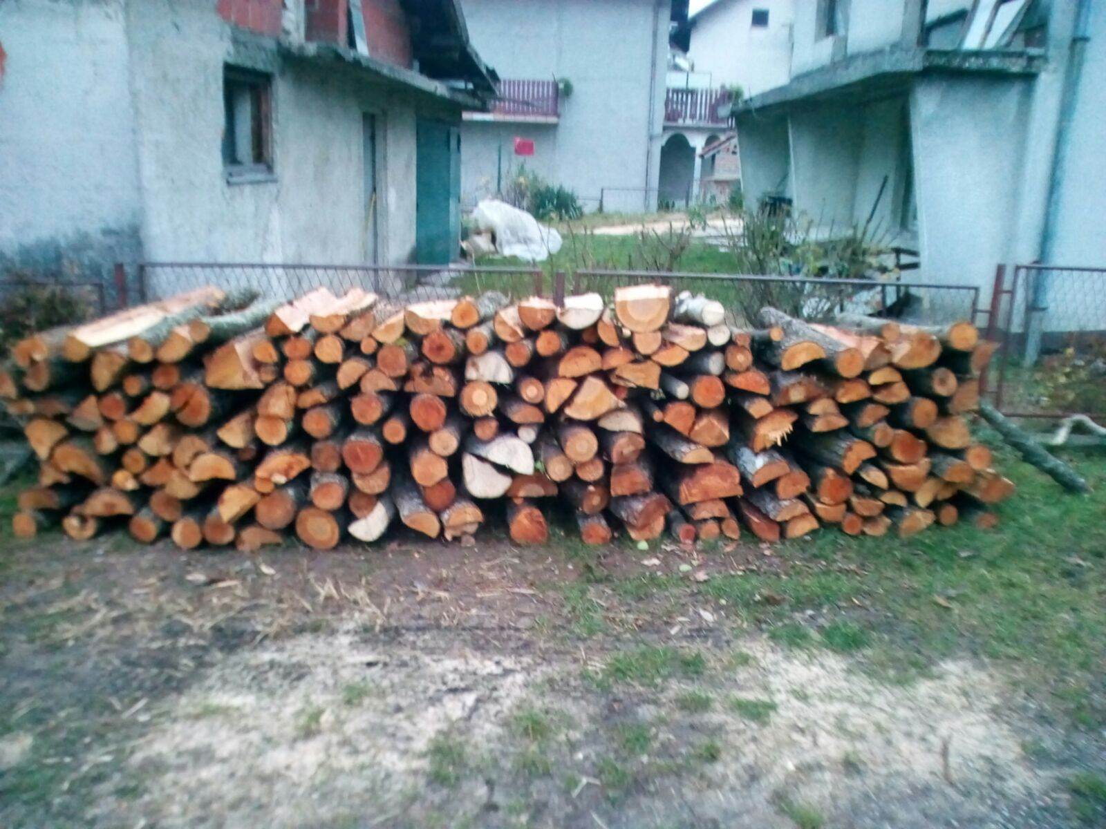 drva-hod4